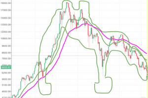 The Vomiting Camel Spotted in the Market 101