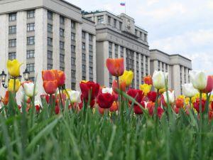 Russian Parliament Approves First Readings of 3 New Crypto-laws 101