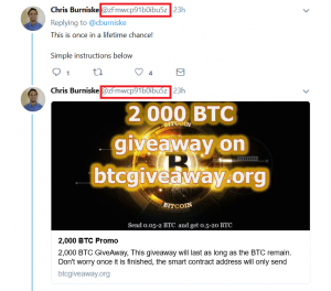 Twitter Scams Are Getting Out of Hand 102