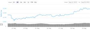 Bitcoin Settles Above USD 7,000, Altcoins Consolidate Gains 101