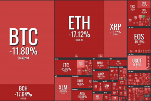 What's Going On in the Crypto Market? 101