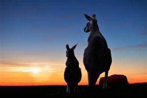 Australian State Eyes Broad Blockchain Adoption 101