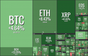 Green Friday for the Crypto Market 101