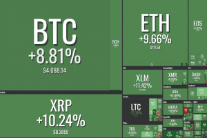 Crypto Market Rebounds After Weekend Massacre 101