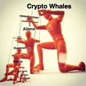 Dances With Bears and 20 Crypto Jokes 106