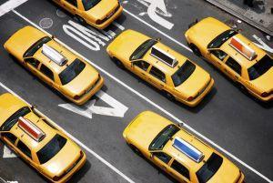 Crypto Strengthens in New York, MIT Develops Data-lite Token 101