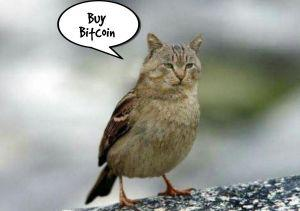 20 Crypto Jokes Collection: Marching Forward 104