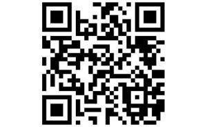 La communauté Bitcoin se mobilise pour sauver Notre-Dame 102