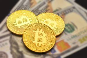More Americans Considering Buying Bitcoin - Survey 101