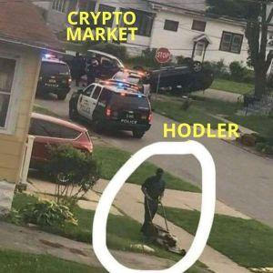 The Crypto Fun Side: Collection of 20 Memes and Jokes 105