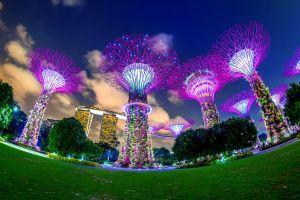 Singapore Builds Global Crypto Hub, Says Head of Binance Singapore 101