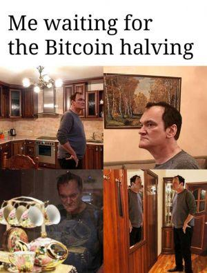 bitcoin halving waiting