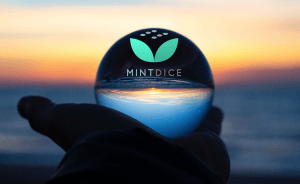 MintDice to Bring New Toys to the Crypto Gaming Market 101