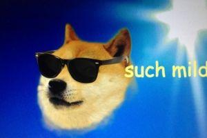 This is Why Dogecoin is Better than 'Altcoins-Degenerators' 101