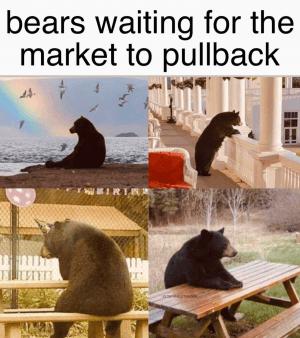 Market Shrugs, Price Nightmares and 20 Crypto Jokes 102