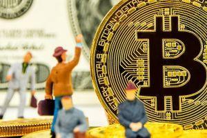 D'après Amun, les volumes de négociation de ses produits Bitcoin ETP proviendront des... 101
