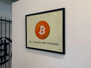 """Tableau """"Ceci n'est pas une monnaie"""" de Pascal Boyart"""