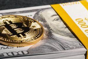 BitPay verarbeitet mehr Volumen, Transaktionszahl bleibt unverändert 101