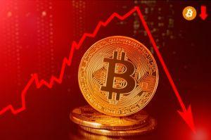 Bitcoin Drops Below USD 10,000, Erases 24 Hour Gains in Minutes 101