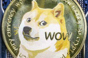 As Dogecoin Barks Louder, Tron's Justin Sun Rides the Focus on TikTok 101