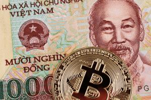 L'utilisation du Bitcoin augmente au Vietnam, au Bangladesh et en Afrique du Sud 101