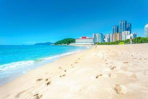 Pack Your Bitcoin: Busy South Korean Beach Says 'Yes' to Crypto 101