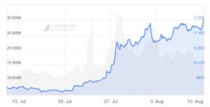 Bitcoin erreicht neues Jahreshoch 102