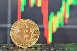 Bitcoin erreicht neues Jahreshoch 101