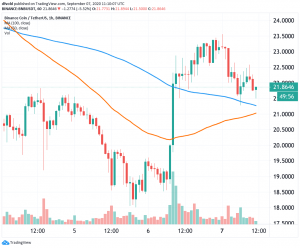 Chainlink, Binance Coin Weekend Rally Stalls On Monday 103