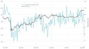 Ballenas Bitcoin usando 2020 para acumular BTC - Investigación 102