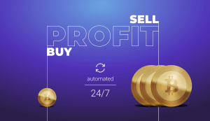 A New Way to Make Your Bitcoin Skyrocket in Value 102