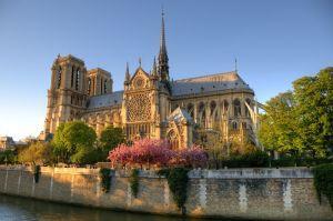 Binance fait un don de 60 000 dollars en Bitcoin pour la reconstruction de Notre-Dame de... 101