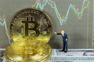 Exchanges Send More USD 1M Bitcoin Transfers as Investors Look For a Hedge 101