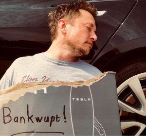 Les pro-Bitcoin se hérissent alors que le jeton préféré d'Elon Musk, Dogecoin, revient... 101