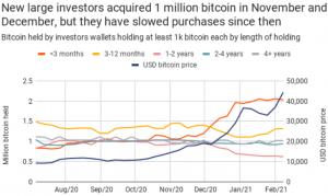 Tesla's Bitcoin Buy Comes As Earlier Large Investors Retreat 102