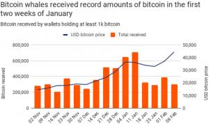 Tesla's Bitcoin Buy Comes As Earlier Large Investors Retreat 103
