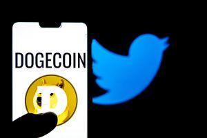 Dogecoin (DOGE) plonge avec le marché alors que Musk nargue la SEC 101