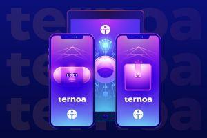 Ternoa démocratise la blockchain et révolutionne les NFT 101