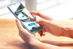 Bitfinex va lancer Bitfinex Pay, un service pour traiter les paiements cryptos sans contact 101