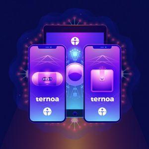 Ternoa démocratise la blockchain et révolutionne les NFT 102