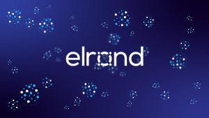 Elrond: en route vers la DeFi 2.0 et un système bancaire autonome 101