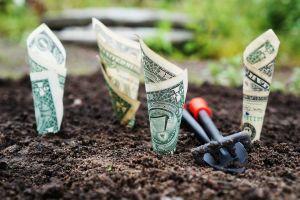 semer de l'argent