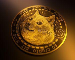 DOGECOIN: Ne pas acheter ou acheter cette cryptomonnaie? 101