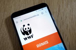 Nytt WWF-projekt för att använda NFT för att rädda djur 101