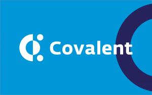 Covalent rend accessibles et utiles les données blockchain 101
