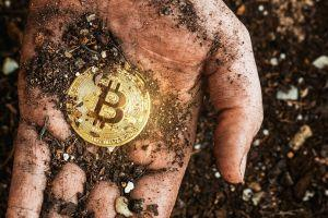 Moving to Green Bitcoin May be Moving To a Two-Tier Bitcoin 101
