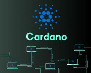 écosystème Cardano