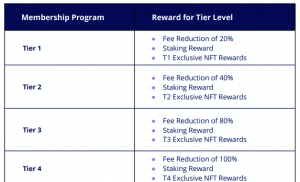 HoDooi.com: la plateforme qui veut révolutionner les NFT 104