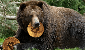 Le Bitcoin est dans un marché baissier ? Comment profiter d'un marché dans le rouge avec... 101