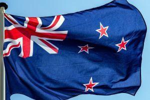Kiwis flockar till Crypto, NFTs trots risk aptit avtar - Survey 101